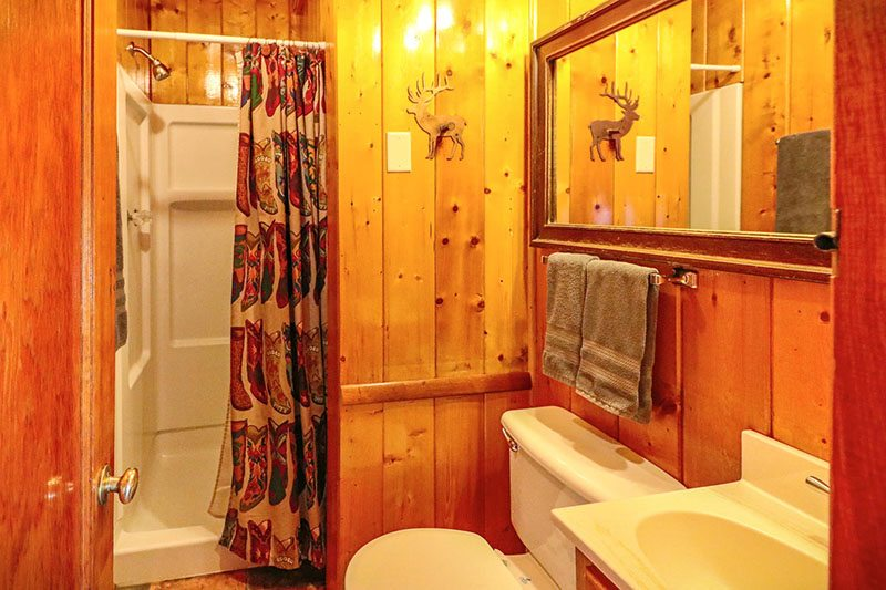Cabin 1 bathroom with shower.